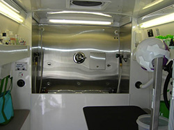 Inside our mobile grooming van